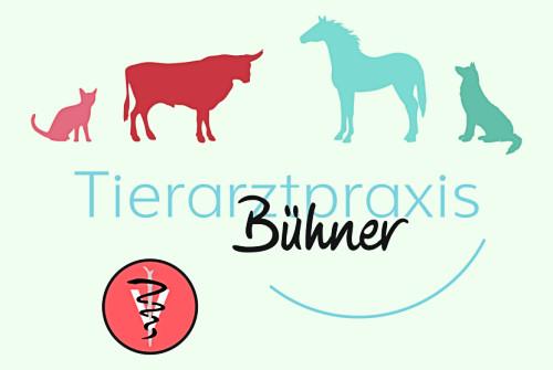 img_tierarztpraxis-buehner_Logo